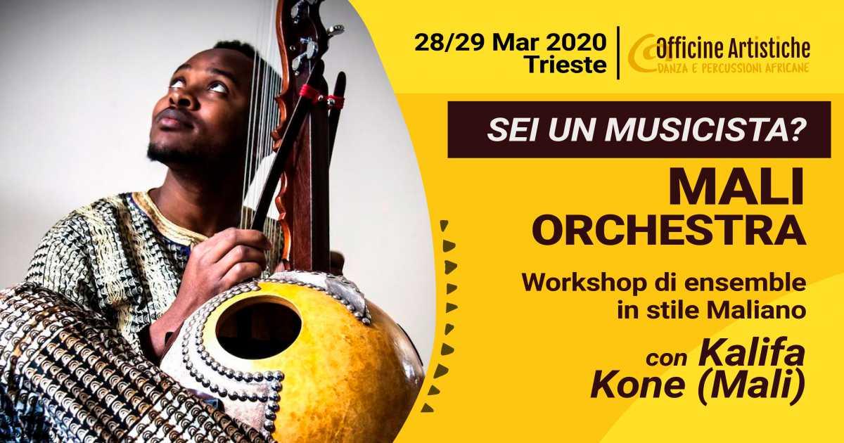 Mali Orchestra con Kalifa Kone